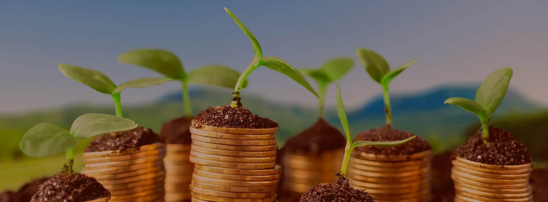 Государственная поддержка<br> малого и среднего предпринимательства<br> в Чеченской Республике